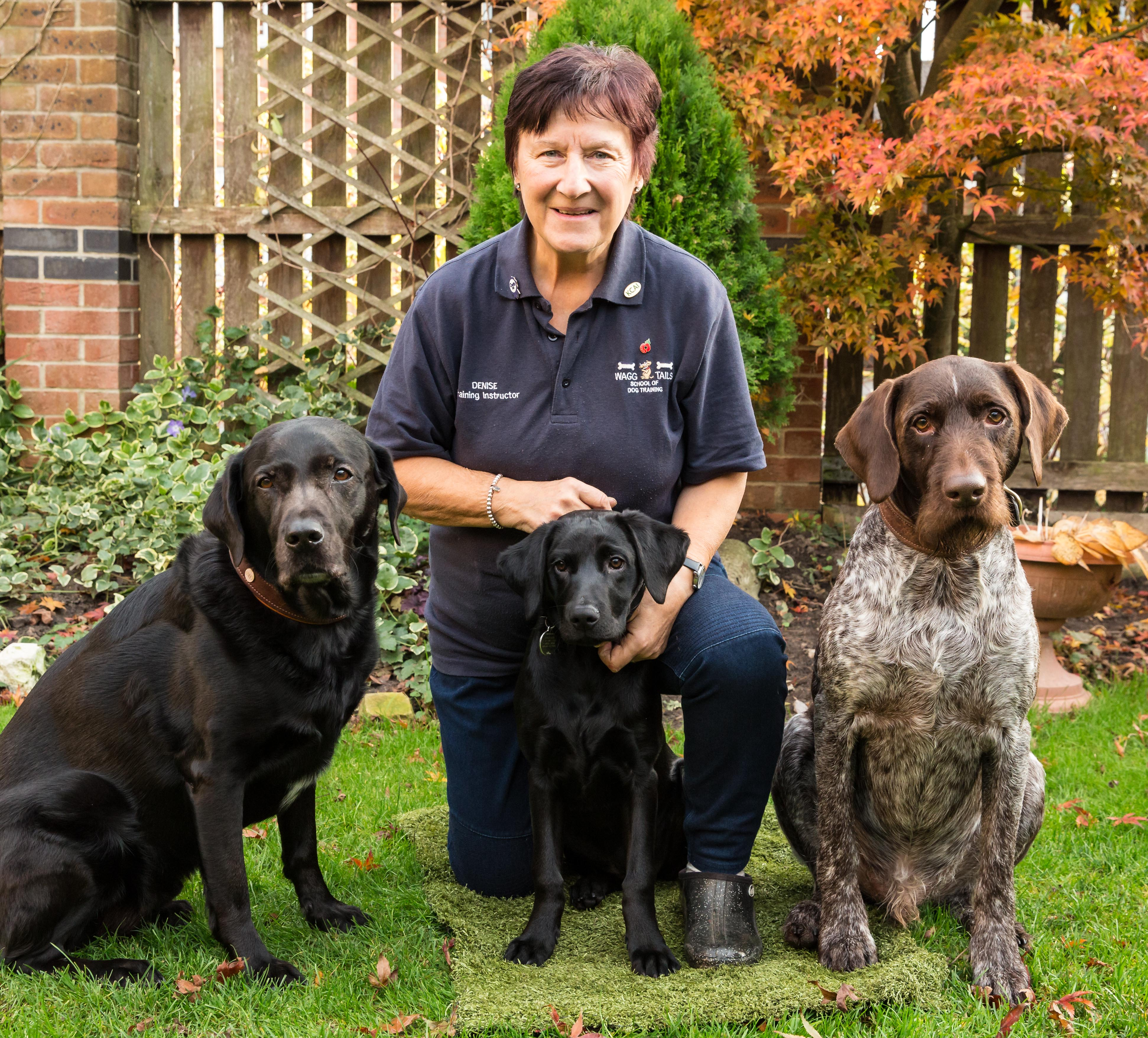 CHESHIRE DOG TRAINER NOMINATED FOR KCAI TRAINER OF THE YEAR AWARD