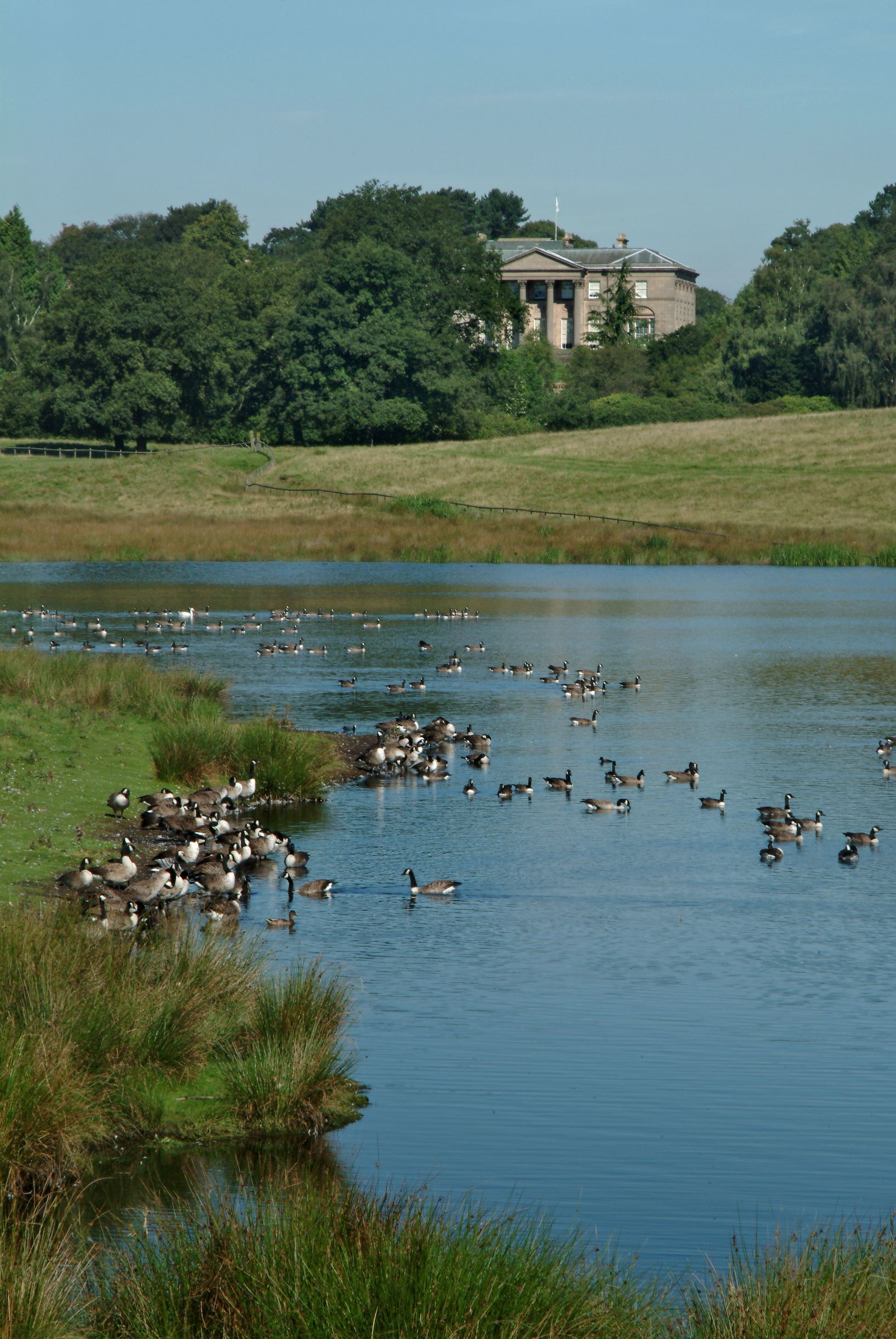 Tatton Park to reopen its parkland on Wednesday