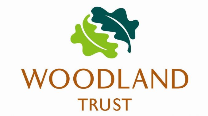 Woodland Trust sets out ambitious aim to help tackle climate change