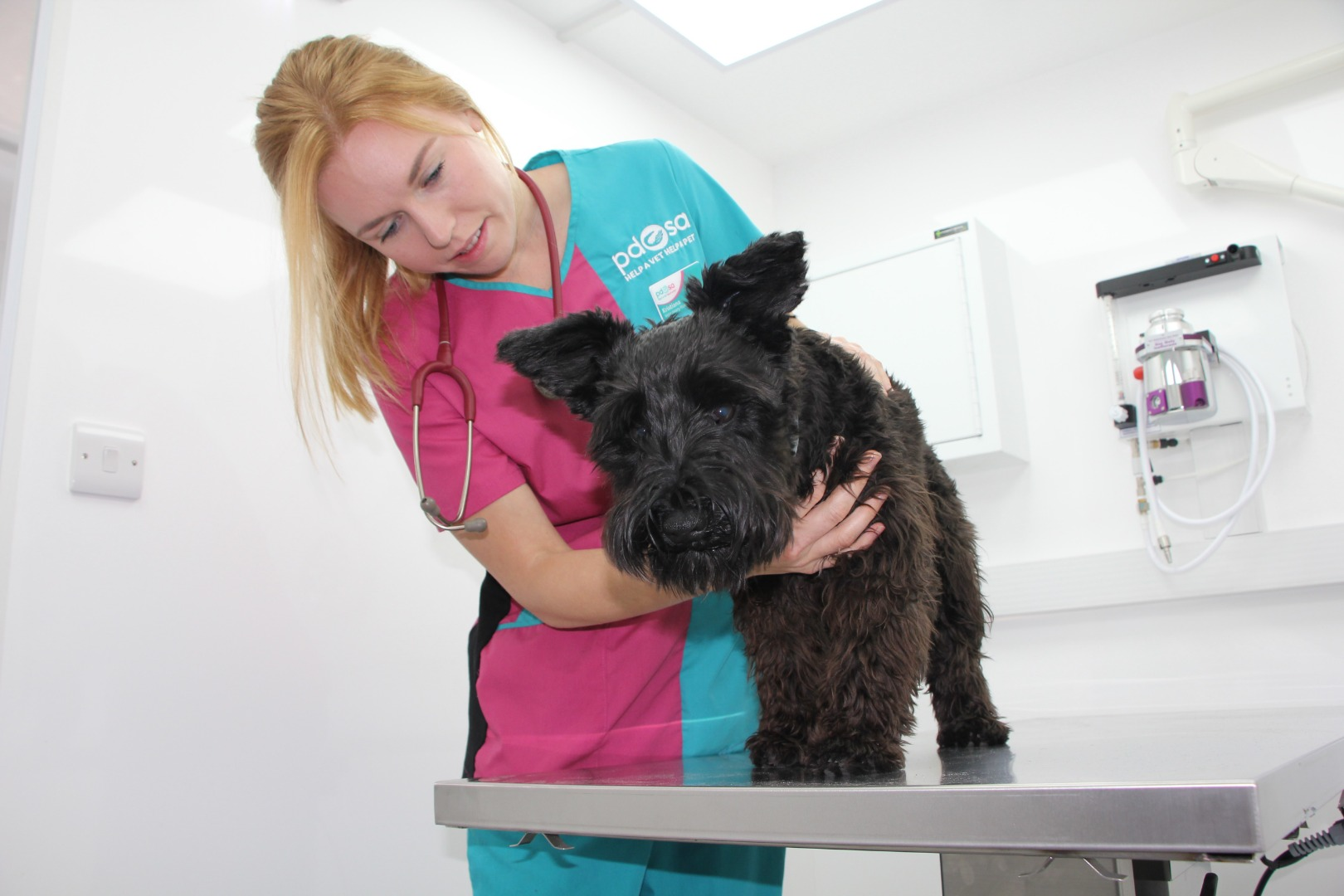 New £250,000 PDSA vet truck rolls into Cheshire